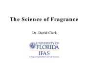 PG_Y+Fall+2010-science+of+fragrance
