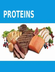 4. Proteins%28done%29 %281%29