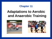 EXSC 310 Chapter 11