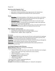 Med Surg ch 44 notes.docx