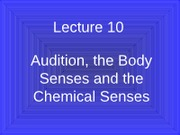 Lecture 10 Audition Slides F10