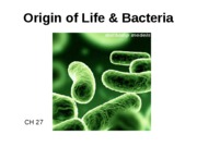 Ch 27 Bacteria