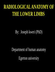 radiological anatomy of the lower limb