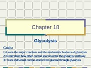 Chapter 18 Glycolysis 2-18-2015