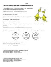 Incomplete And Codominance Worksheet Doc - worksheet