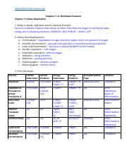 Worksheet Ch 7 to 11 Answers.pdf