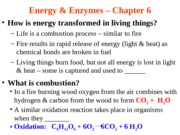 Lecture 5-Energy and Enzymes