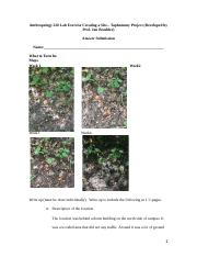 F16 ANT 220 Lab Exercise Taphonomy  Answer