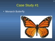 Case Study #1 - Monarch Butterfly