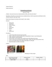 Photosynthesis Lab Write-Up.docx
