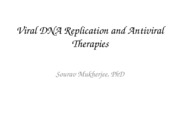 5_Viral DNA Replication