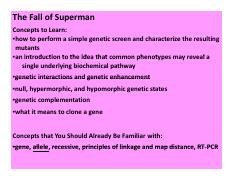 MGY200-2014-Superman-Genetic Analyses