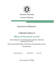 Report Collective labour II.docx