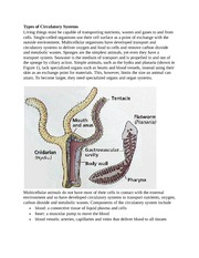 Types of Circulatory System1