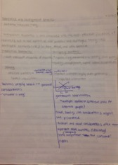 Econ 129 Notes- development economics