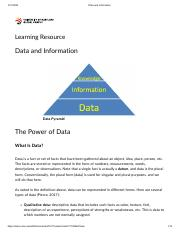 Data and Information.pdf