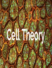 Cell Theory.pdf