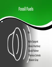 Fossil Fuels-ShavonGray-pc