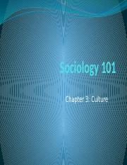 Sociology 101-chapter 3 Culture