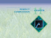 Chapter 11 - Perfect Competition