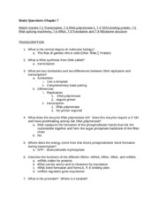 Cell Bio Study Guide Chapter 7.docx