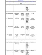 Exam 4 SI Muscle Chart