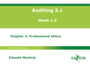 Auditing 3.1 college 2, chptr 3, eme03