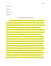 Long essay argument document.docx