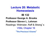 Lecture_20r_Metabolism