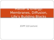 Matter and Energy - Membranes Diffusion Lifes Building Blocks - Student - Fall 2013