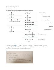 Chapter 1 Worksheet Key - Chapter 1 The Origin of Life Worksheet 1 ...