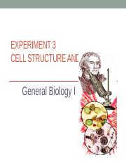 Experiment 3- Cell structure and Function (2)-4.pptx