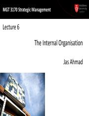 MGT3170 Lecture06-Internal Org