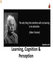 2. Learning Cognition and Perception.pdf