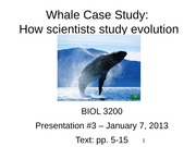 04' - Presentation #3 - Whale Case Study (chapter 1)