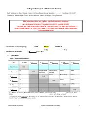 Lab Report Worksheet-  What's in the Bottles?.docx