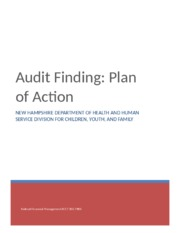Audit Finding Plan of Action paper