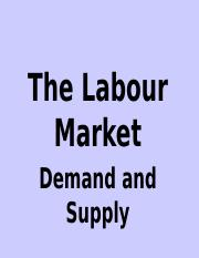 Topic 2 - Labour Market Demand & Supply ppt.pptx