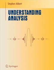 Understanding Analysis _ Solutions Manual 2010