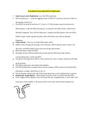 Essay Outline (Translation Transcription and Experiments).docx