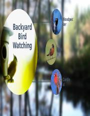 Backyard Birding - Aaron Green