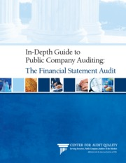 In-Depth_GuidetoPublicCompanyAuditing