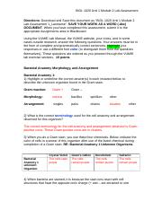 BIOL 1020 Unit 1 Module 2 Lab Assessment_Vicznesky.docx