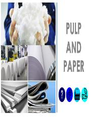 01 Pulp and Paper pdf.pdf
