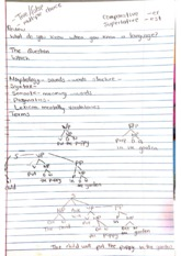 Sociolinguistics chapter 7 Notes comparative and superlative