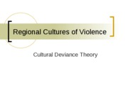 Regional_Cultures_of_Violence_pres