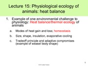 Lecture 15 - Physiological ecology of animals-heat balance