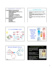 Biochemistry II Lecture 1 Notes