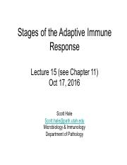 Hale_Lecture 15 Stages of the Adaptive Response 2017 updated.pdf