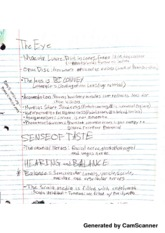 Notes on the Eye and the Endocrine System